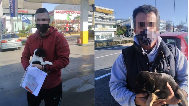 Ακόμα δυο υιοθεσίες σε Ηλιούπολη και Κορυδαλλό για δυο κουταβάκι από το Ναύπλιο