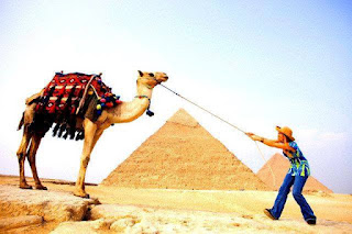 Tours from Hurghada to Cairo