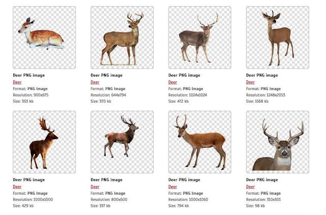موقع مجاني يقدم صورمفرغ عالية الجودة للمصممين بكل سهولة