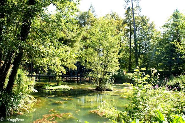 Il bel parco di Leonardo con la sua vegetazione