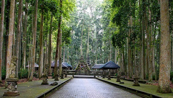 Keindahan Alas Pala Sangeh (Pura Bukit Sari, Hutan Pala & Kera)