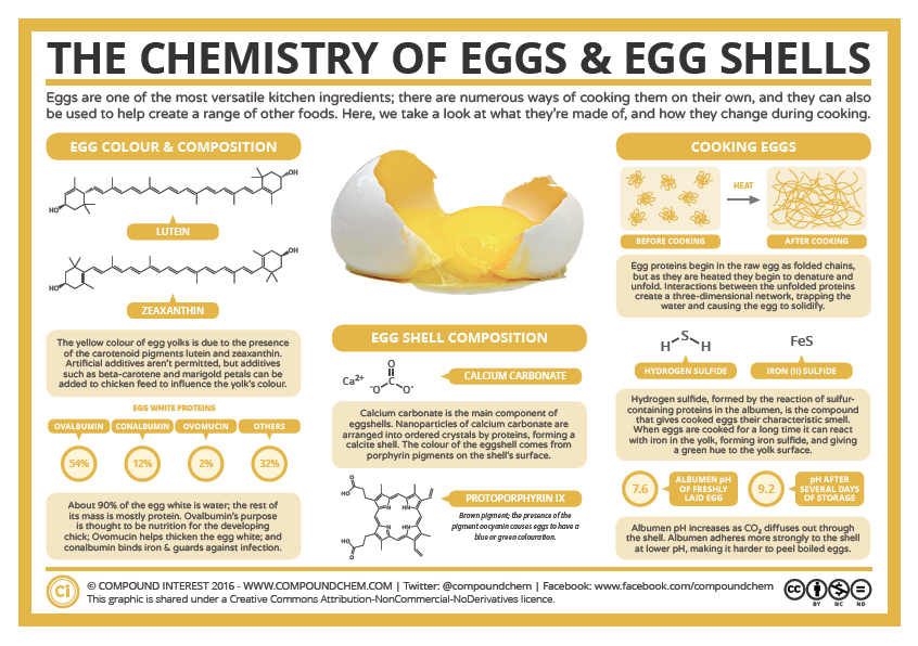 The Chemistry of Eggs and Egg Shell