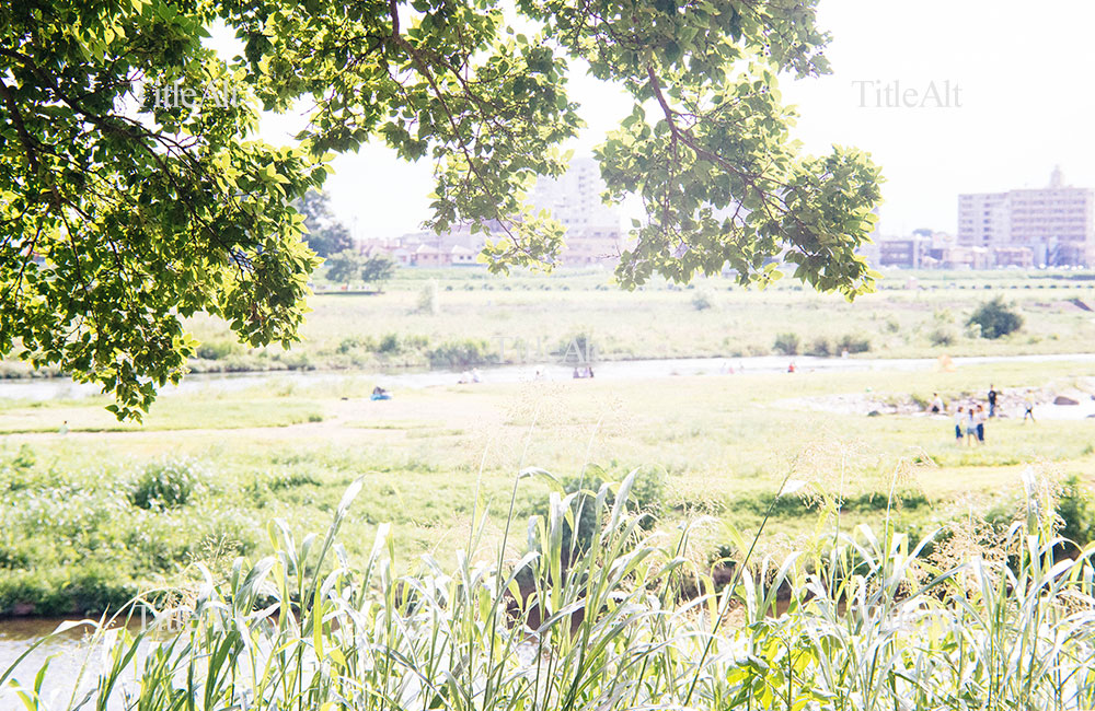多摩川河川敷の写真