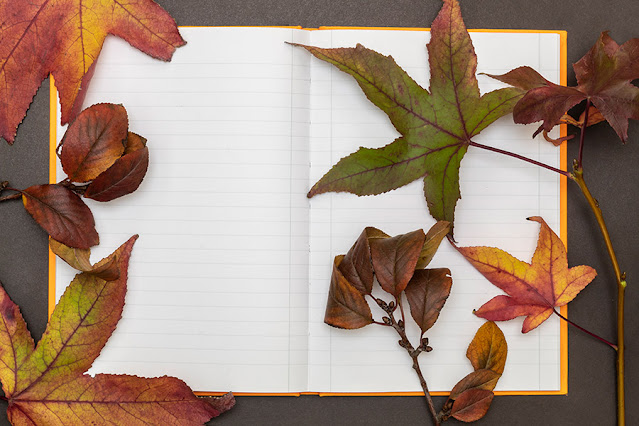 Blank Open Notebook Covered With Autumn Leaves Free Image
