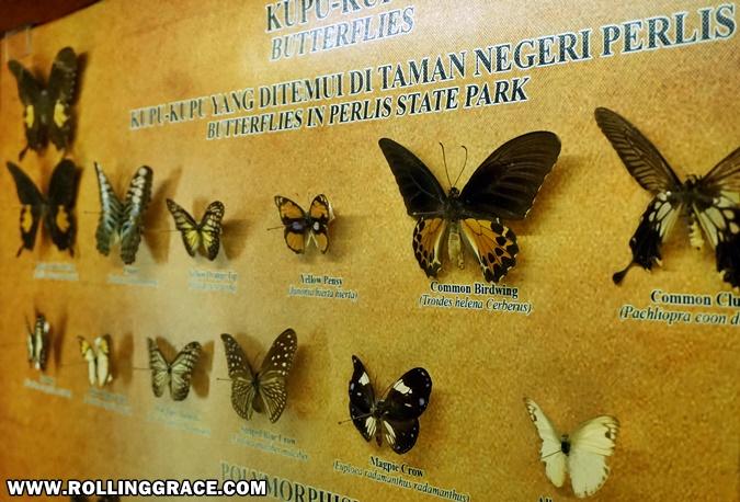 Gua Kelam 3D Gallery