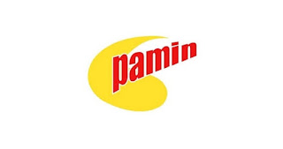 Industrial Sales Manager di PT Pacific Medan Industry (Pamin)