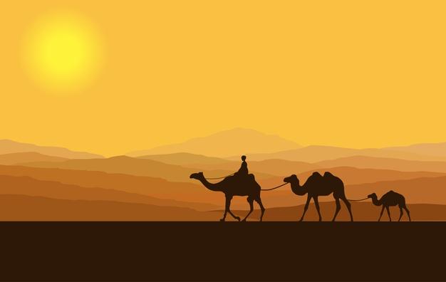 Perjalanan Hidup Syaikhul Islam Ibnu yang Mengagumkan