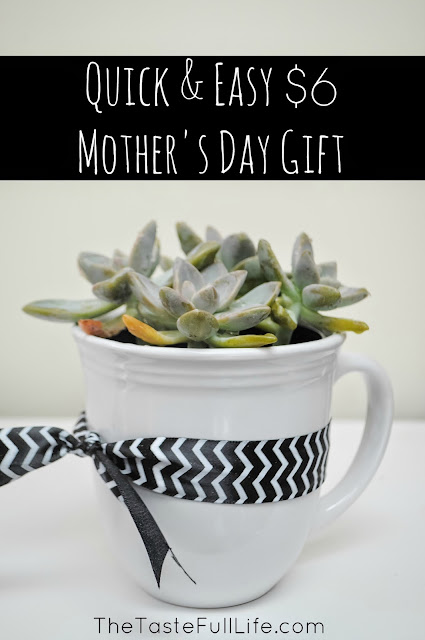 Quick and easy mother's day gift succulent in a mug