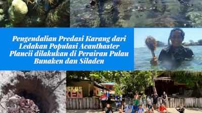 Pengendalian Predasi Karang dari Ledakan Populasi Acanthaster Plancii dilakukan di Perairan Pulau Bunaken dan Siladen