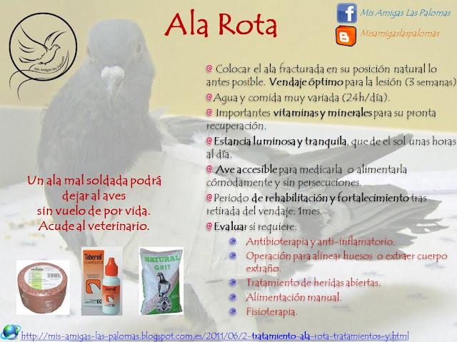 Mis amigas las palomas: Tratamiento ALA ROTA