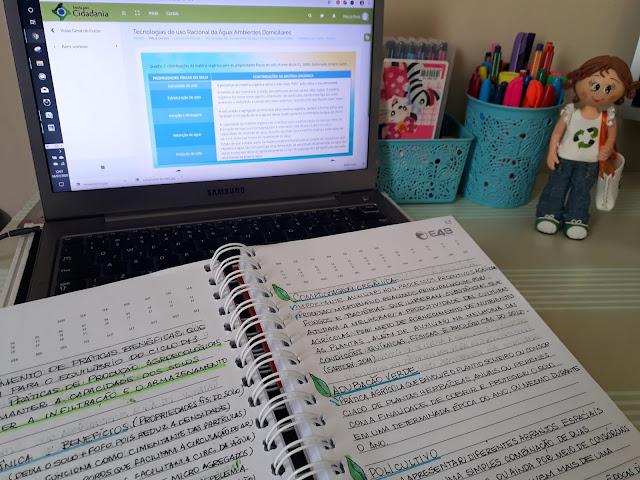 como se organizar para estudar, cursos na área de ustentabilidade