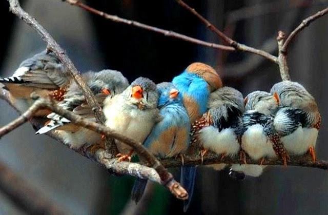 Si la vida te da personas maravillosas es porque lo mereces