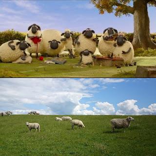 Collage aus zwei Bildern: oben Szenenfotoa su Shaun2-Farmageddon mit Schafen am Stricken und Schachspielen, unten Foto Schafe am Nordseedeich