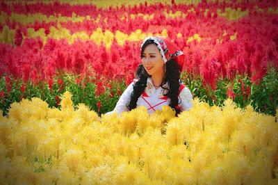 Gambar Cantik Taman Bunga Tali Asmoro Cilacap