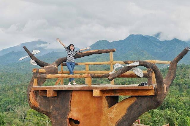 Bukit Gandrung Malang Jawa Timur