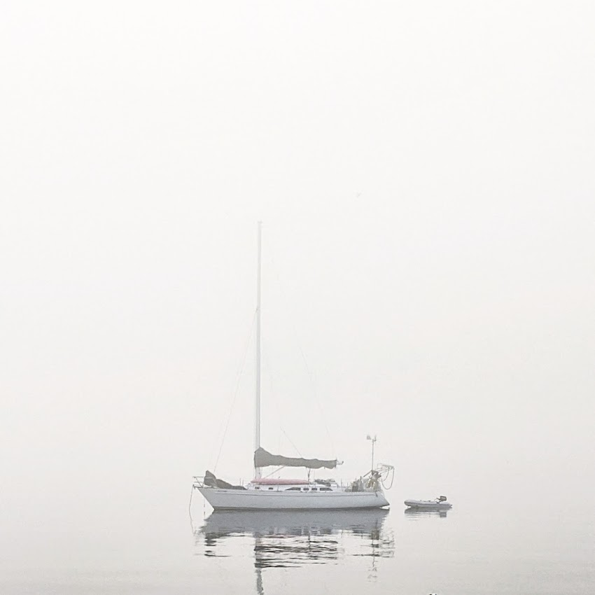 Portland, Maine USA May 2020 photo by Corey Templeton of a sailboat in the fog on the Eastern Promenade.