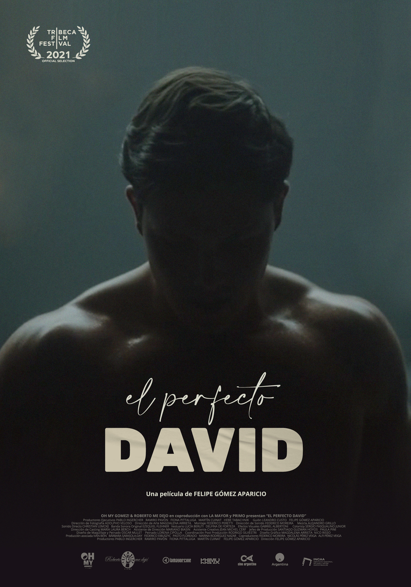 the perfect david poster