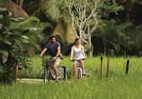Plataran Ubud Hotel & Spa - Cycling Activity - Salika Travel - 3D2N Ubud Escape by Plataran Ubud Hotel & Spa