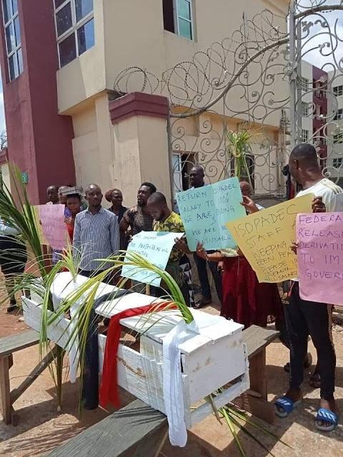 Slash In Salaries - Imo Workers Go Spiritual With Hope Uzodinma
