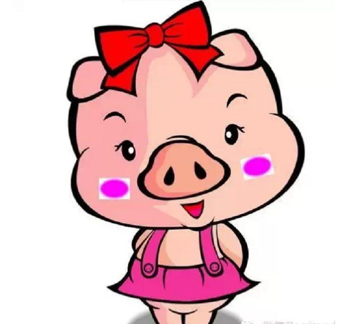 不要隨便叫別人豬!因為(豬)的意義很重......看完你就知道了!