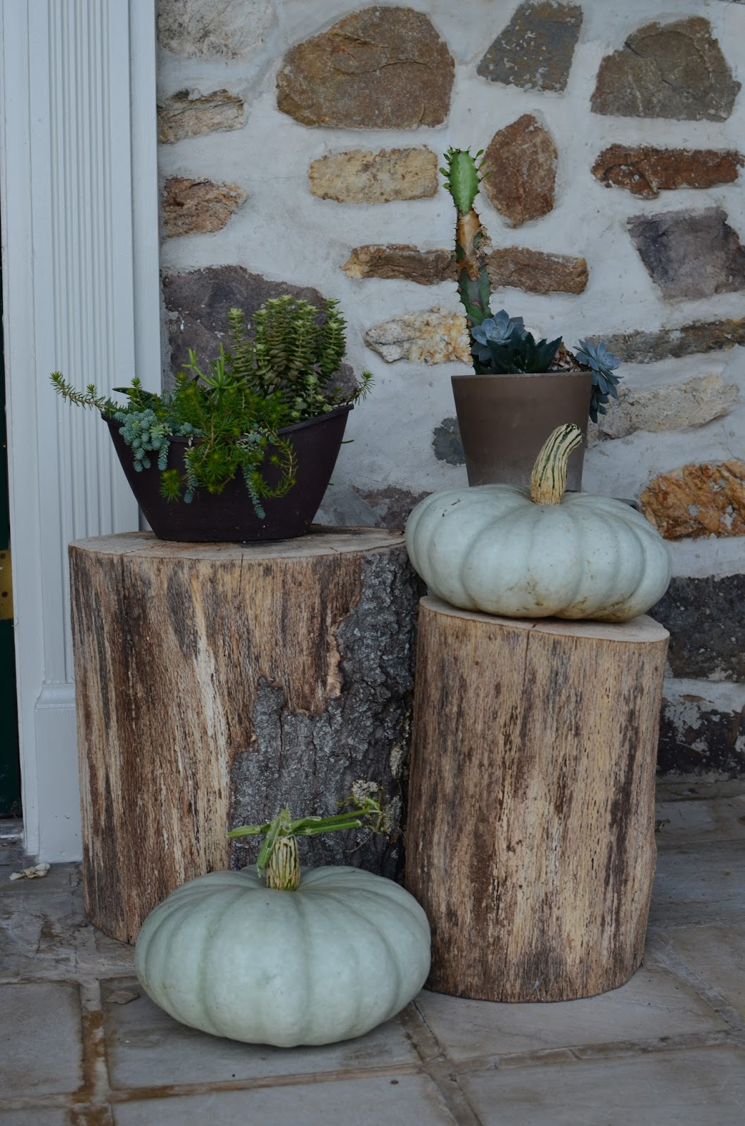 Jarradale Pumpkins at A Nest for All Seasons with Amy Renea