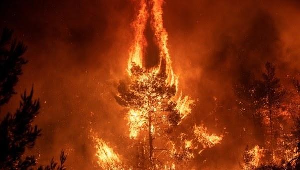 ( FOTOS ) mas de 50 incendios estan sobre Grecia.