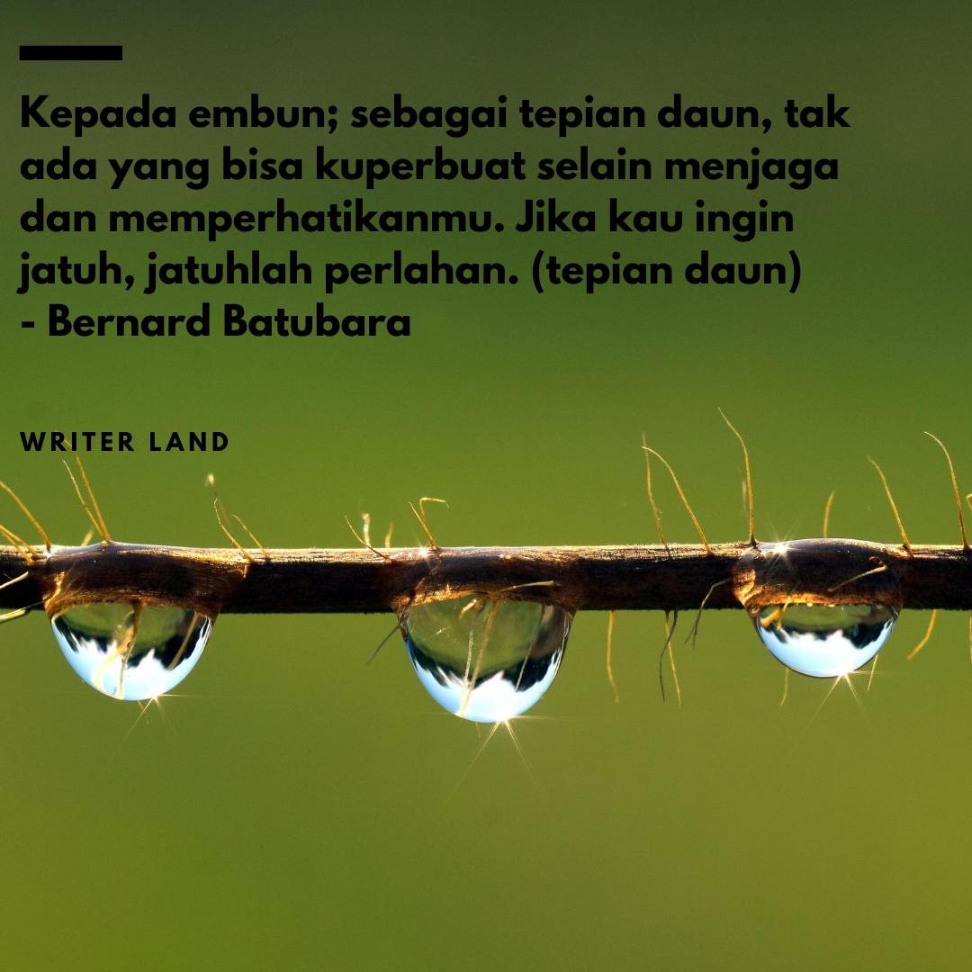 Puluhan Puisi Keren Tema Embun Writer Land