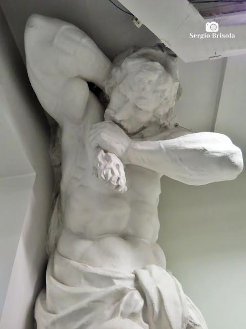 Close-up do Atlante Hércules da Pinacoteca de São Paulo - Luz - São Paulo