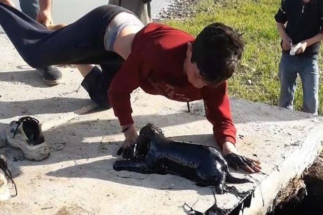 (Видео) 10-летнего мальчика спустили вниз головой в нефтяную скважину за тонущим щенком