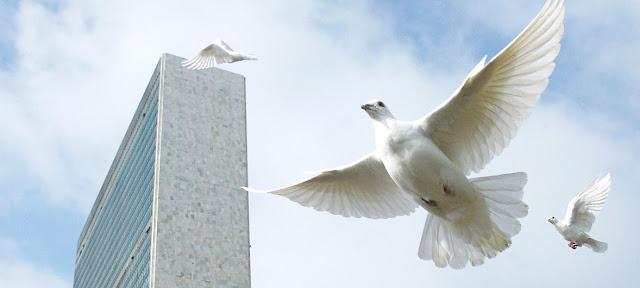 Palomas volando frente al edificio de la ONU en Nueva York durante la ceremonia del Día Internacional de la Paz. (Foto de archivo) /Mark Garten