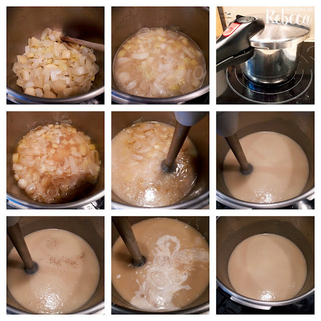 Receta de vichyssoise (sopa o crema de puerros) 02
