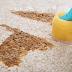 ¡Guía para eliminar las manchas de las alfombras en su hogar!