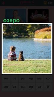 на озере около воды сидят мальчик с кошкой и смотрят на воду