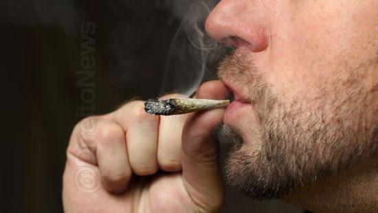 fumar maconha intervalo demissao justa causa