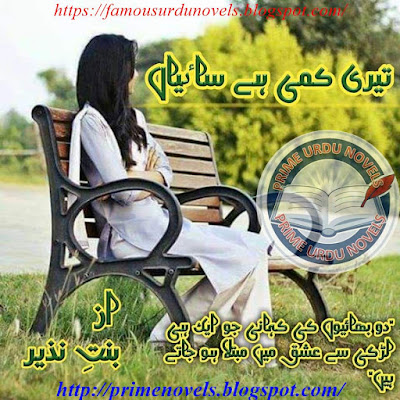 Teri kami hay saiean novel pdf by Bint e Nazir