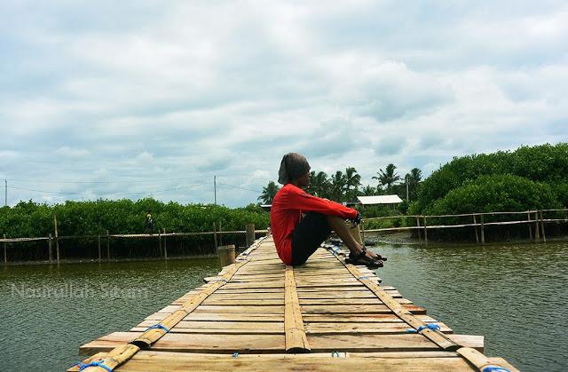 Menikmati waktu di Hutan Mangrove Pantai Congot