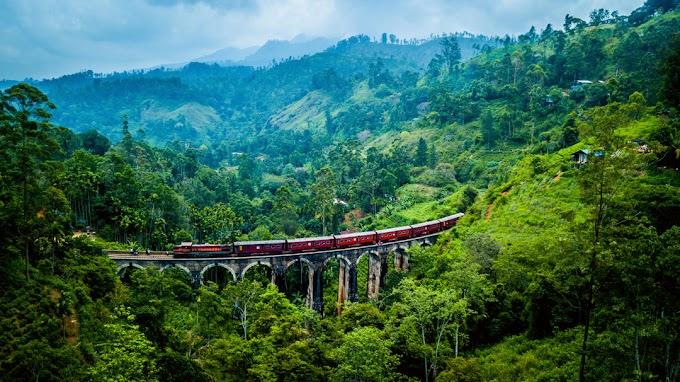 6 причин посетить Шри-Ланку