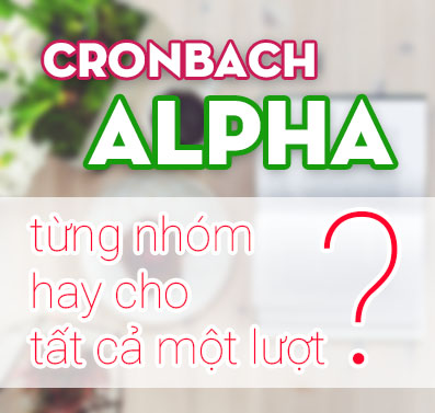 Chạy Cronbach Alpha cho từng nhóm hay cho tất cả một lượt?