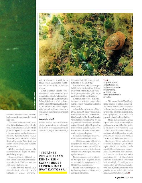 Valokuva Kippari-lehden artikkelin kolmannesta sivusta