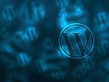 Beberapa Hal Tentang Wordpress Yang Harus di Ketahui
