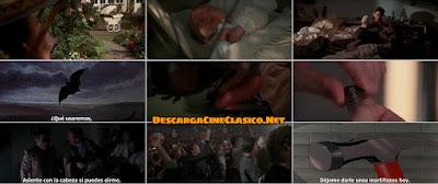 Capturas de la película: El muro (Pink Floyd - The Wall) (1982)