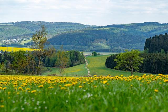 Kammweg Erzgebirge  Etappe 3+4 von Sayda nach Olbernhau  Wandern in Sachsen 03