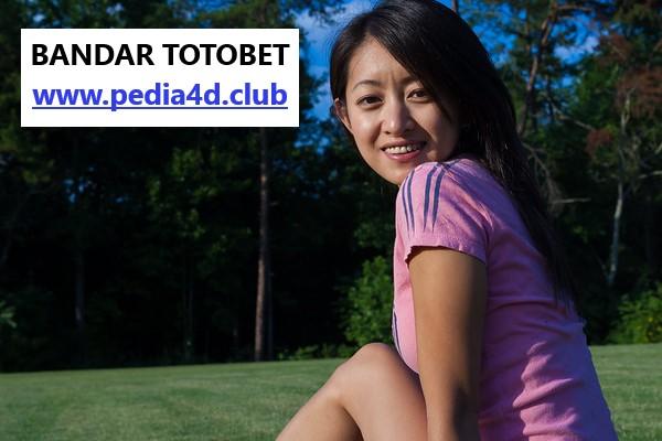 Perjuangan Bandar Togel Totobet Online