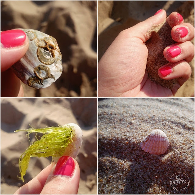 muszelki piasek
