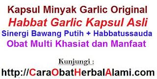 Jual Khasiat Manfaat Kapsul Bawang Putih HABBAT GARLIC Oil ASLI