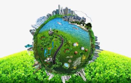 ecología, disciplinas de la ecología, importancia de la ecología