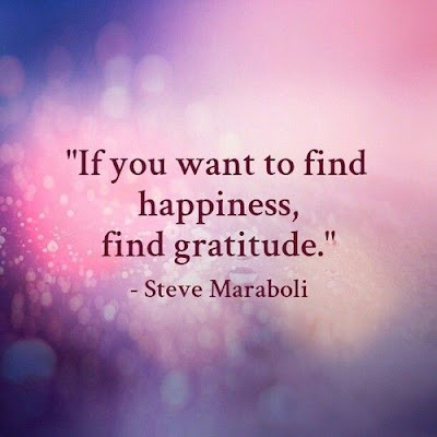Steve Maraboli Quotes Happiness