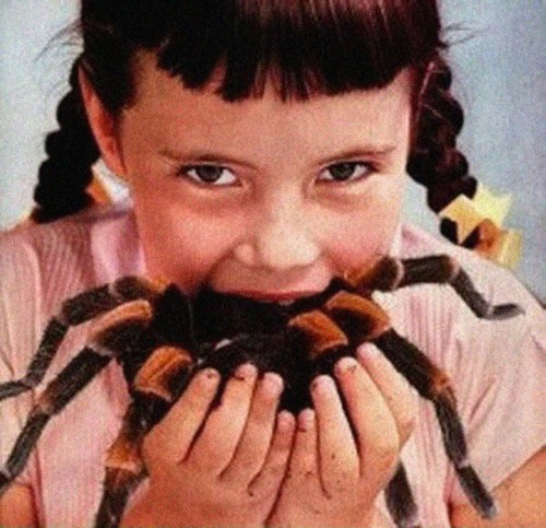 RNDM Select: 35 creepy images that will scare you stupid ...