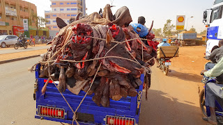 Africa eats everything, including the heads with brains and legs.