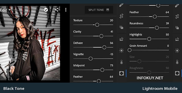 EFFECT & Split Tone - Tutorial Edit Foto Black Tone Lightroom